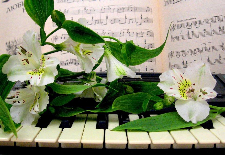 Красивая музыка для поздравления 77