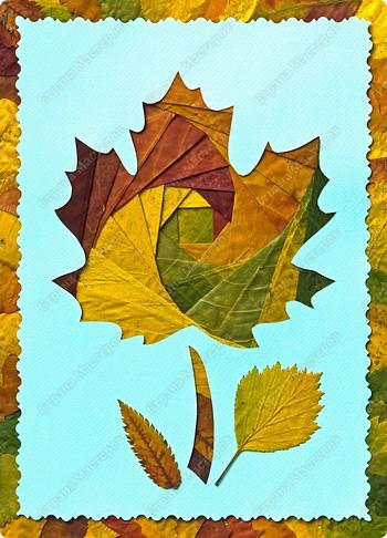 Мастер-класс для детей из листьев